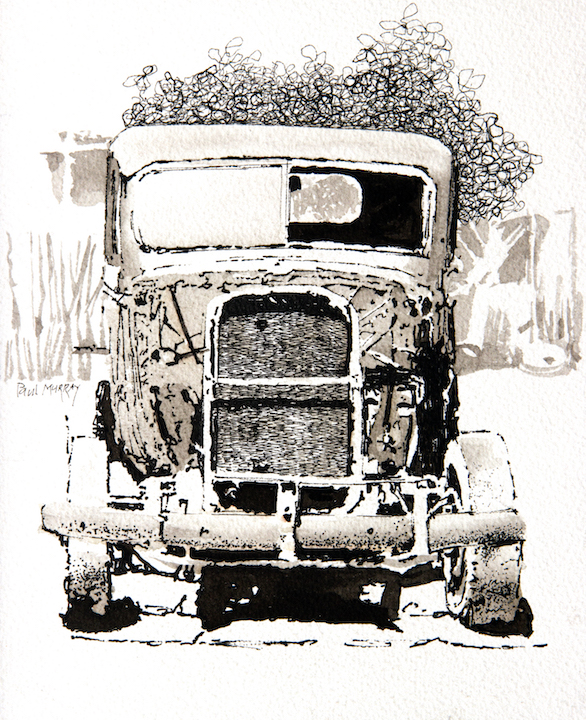 kino truck