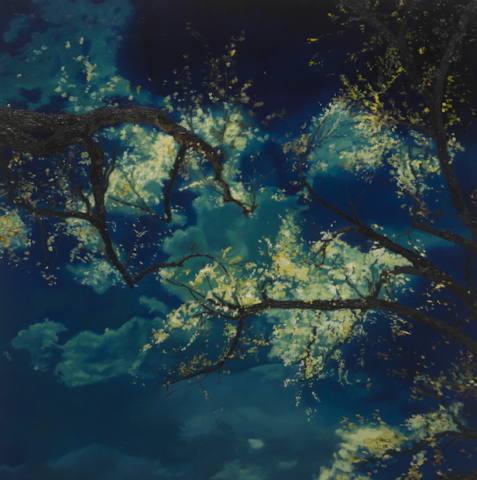 Sky Aperture, Cheryl Dietz