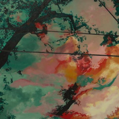 Sky Under-surface, Cheryl DIetz