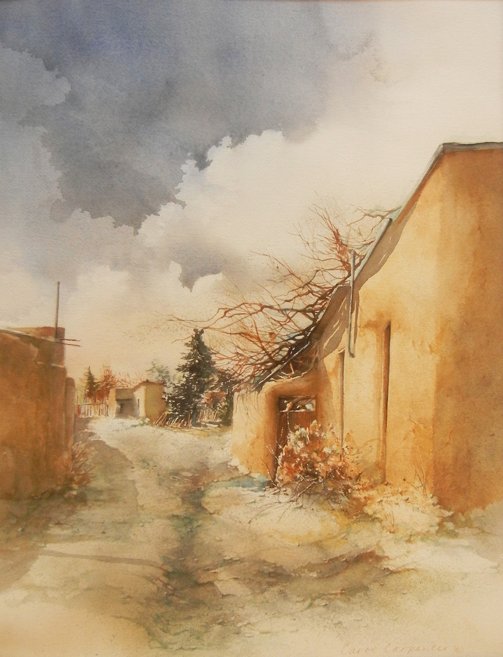 Canyon Road Alley, Carol Carpenter