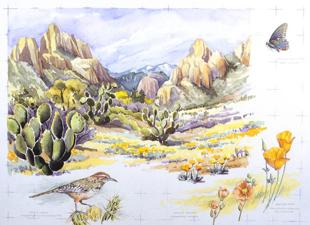 Chiricahua Spring, David Welch