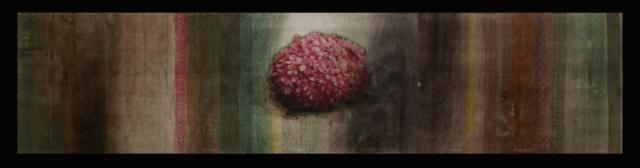 For Women on 3-11-2011, Yoshiko Shimano