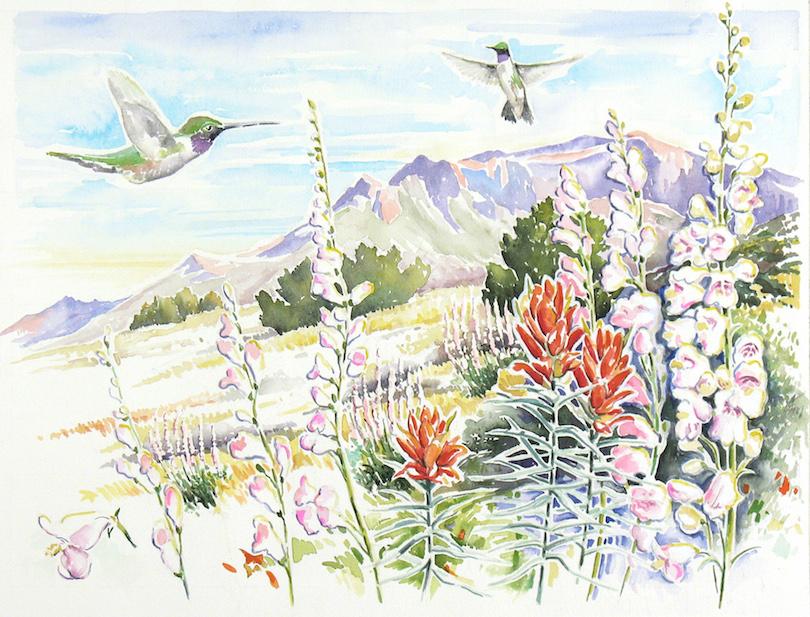 Primavera, David Welch