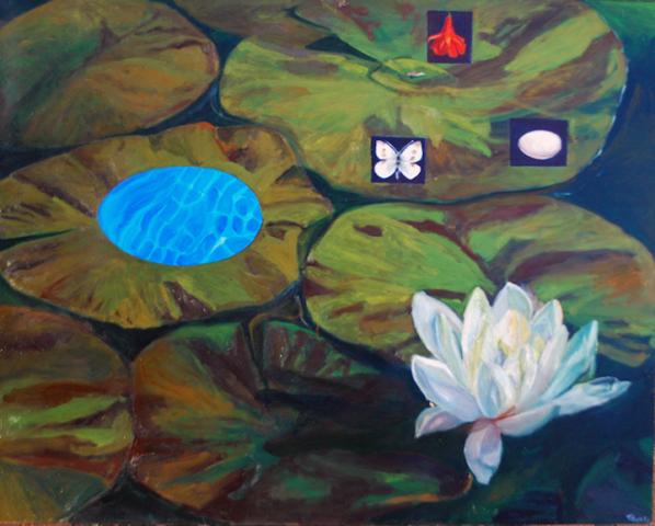 Claudia's Pond, Tauna Cole