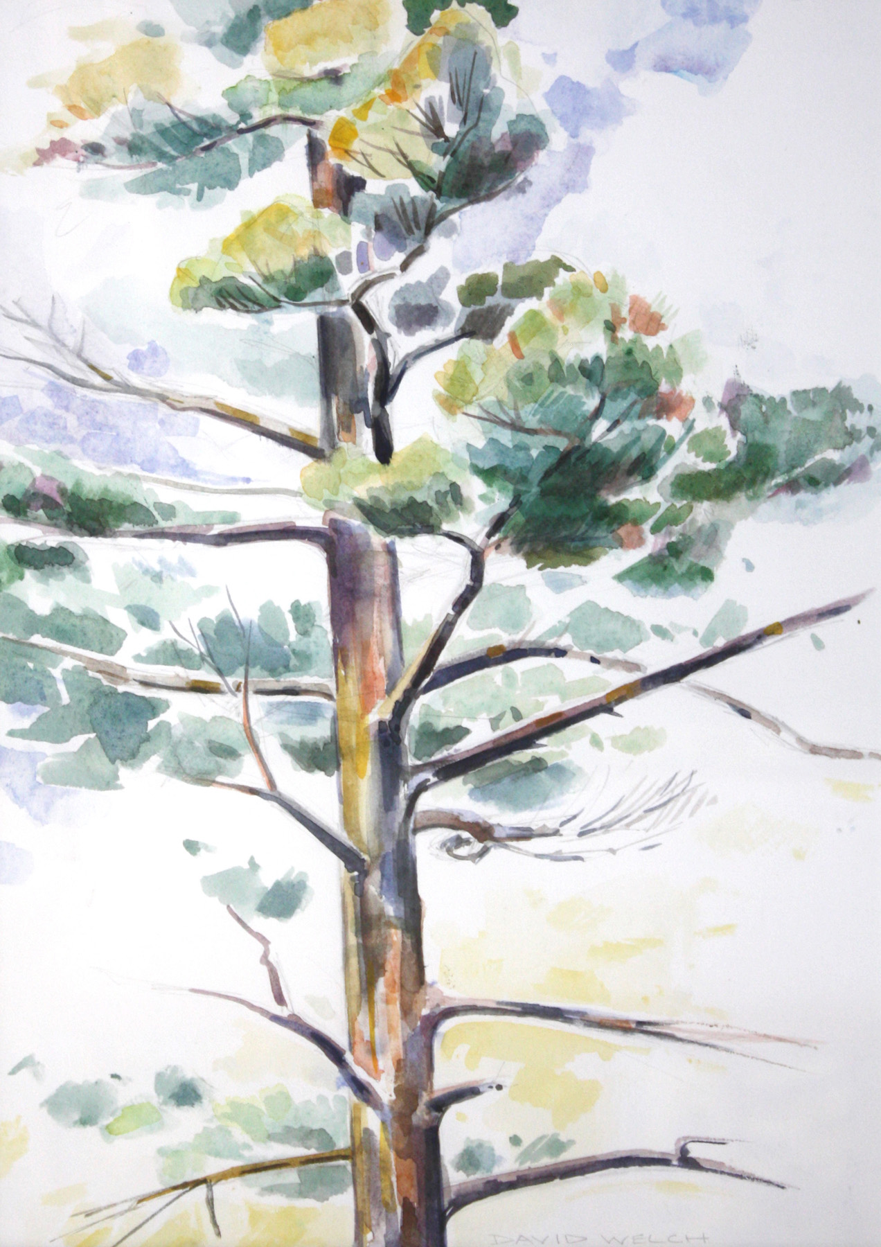 Windswept, David Welch