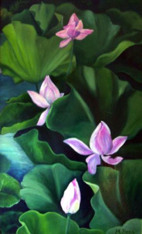 Lotus Flowers, Marian Berg