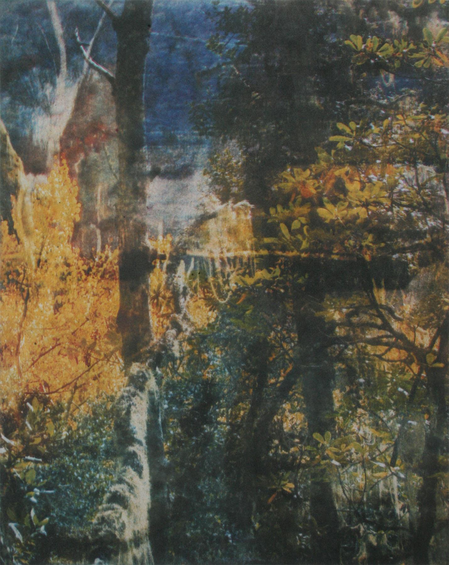 The Start of the Majestic World, Jessica Weybright