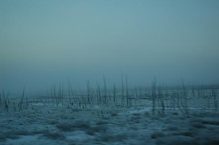 Max Woltman: Arctic Edge