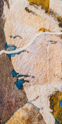Chris Meyer:  Picass on on the Mesa