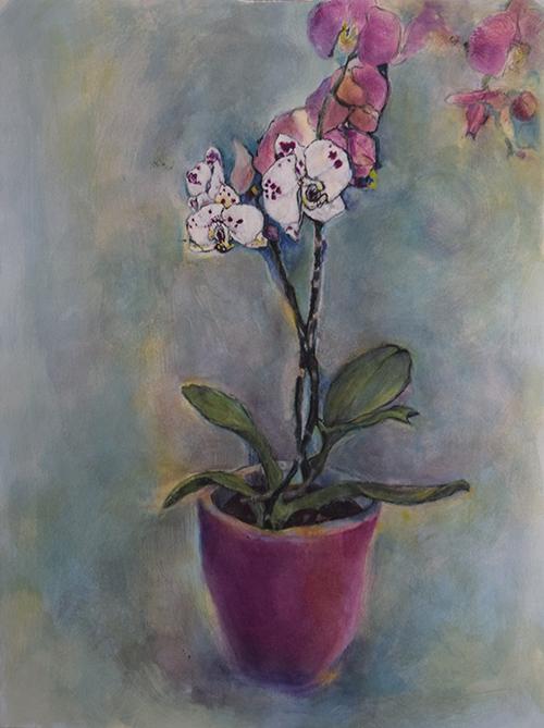Carol Felley, Morning Light