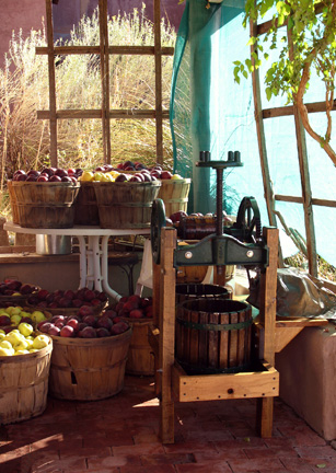 Joan Fenicle: Manzanas de Placitas