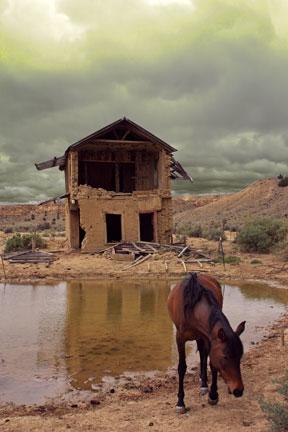 Joan Fenicle: Abandoned
