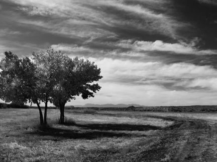 Joan Fenicle: The Road to Nowhere