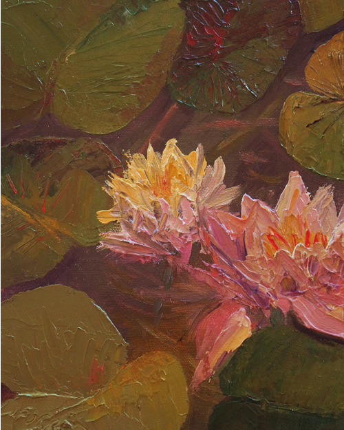 Carla Forrest: Water Lilies