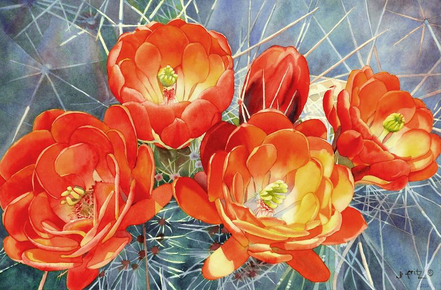 Jane Fritz: Claret Cup Cactus