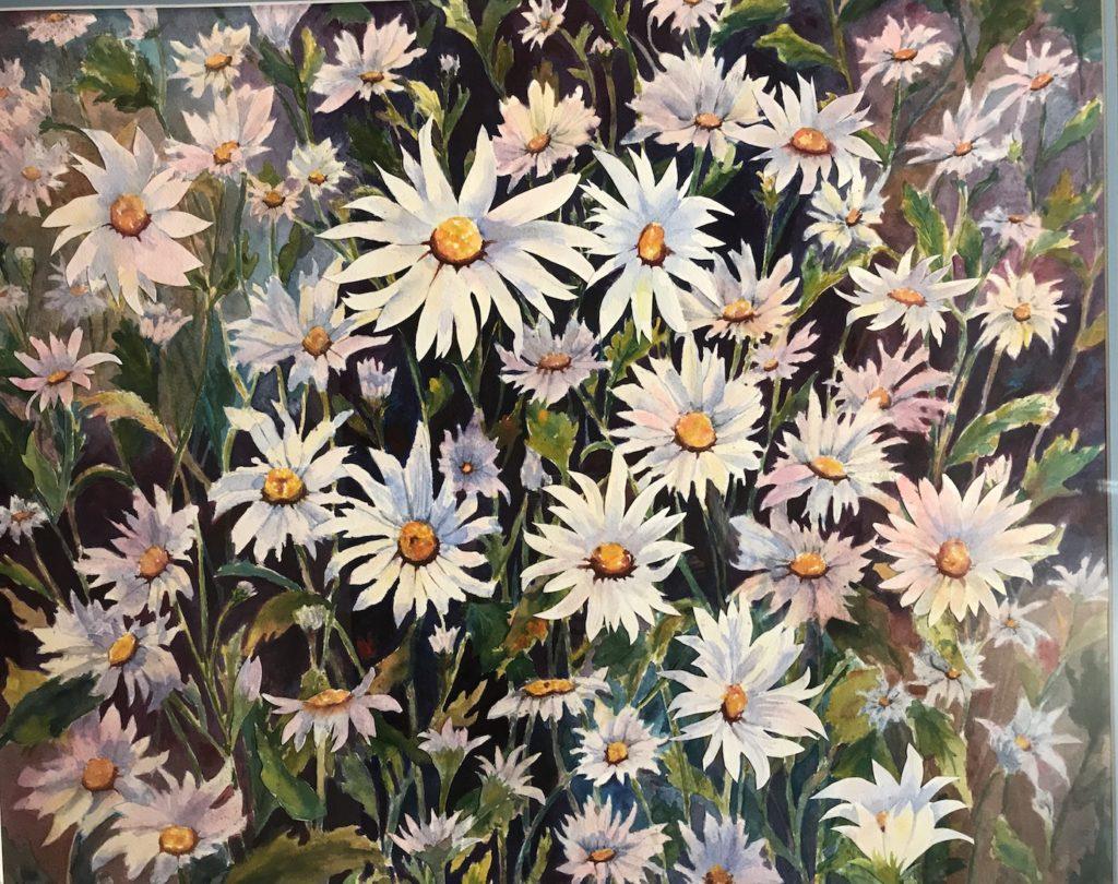 Kay Richards: Daisies Galore