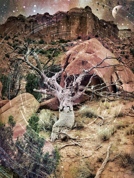 David Hoptman: Ghost Ranch Dream