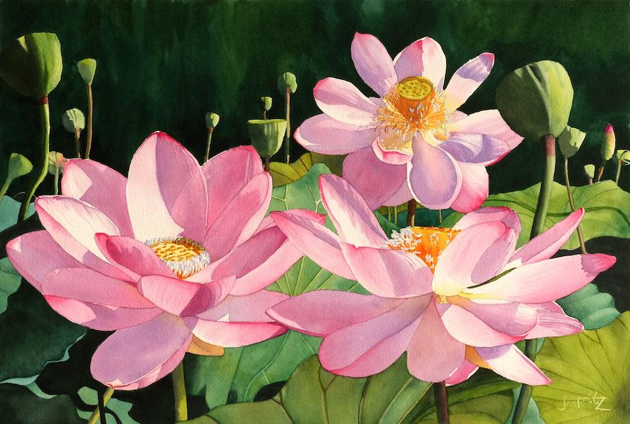 Jane Fritz: Lotus