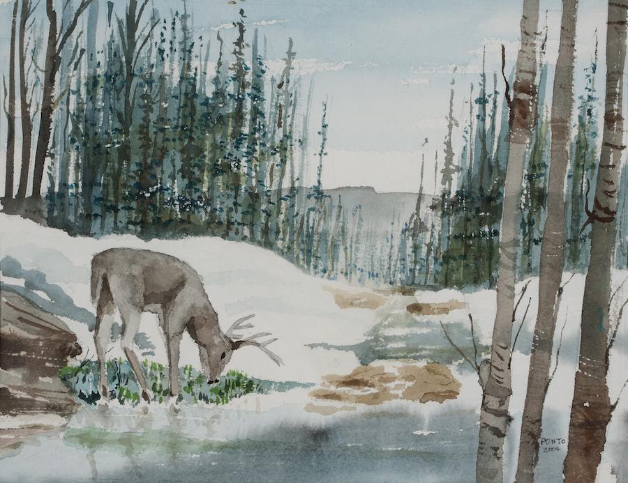 Robert Ponto: Spring's First Grass