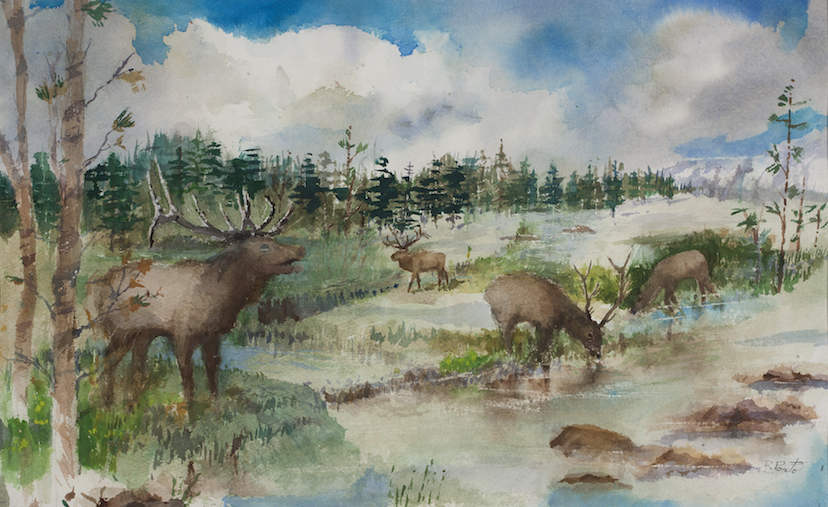 Robert Ponto: Elk at the Water