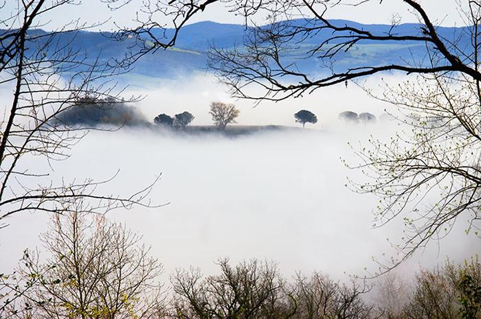 David Hoptman: Proceno Fog