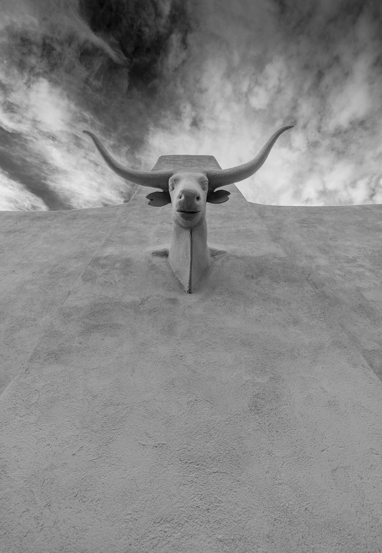 Stan Ford: The Steer