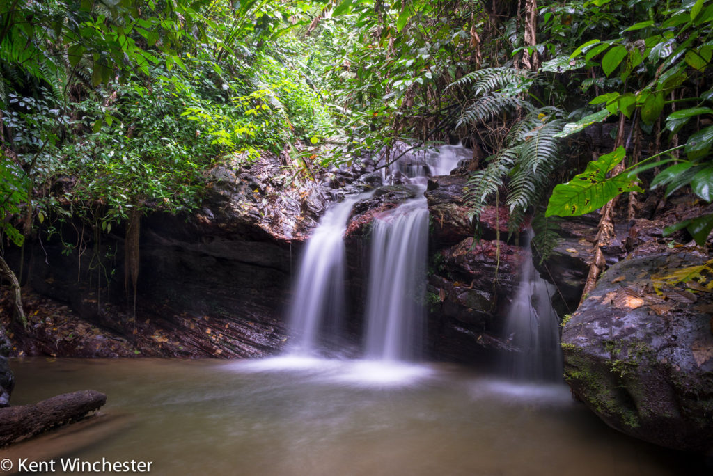 Kent Winchester: Trinidad Falls