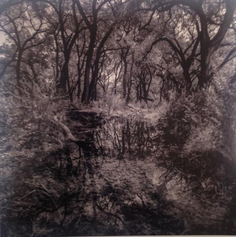 Hans Gebhardt: Reflections