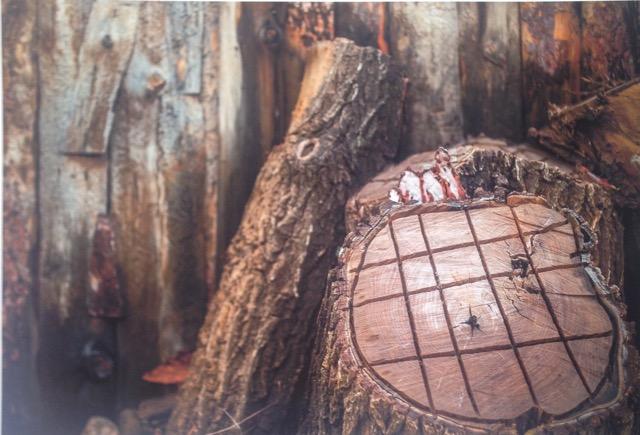 Hans Gebhardt: Wooden Still Life