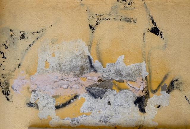 Gebhardt & Williams: Zen Mood