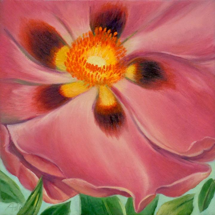 Carol L. Adamec: Pink