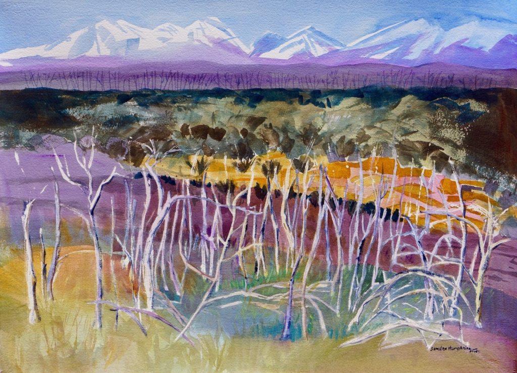 Sandra Humphries: Mesa Verde Firescape