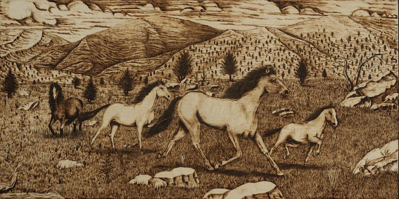 Kevin Castillo: Wild Horses