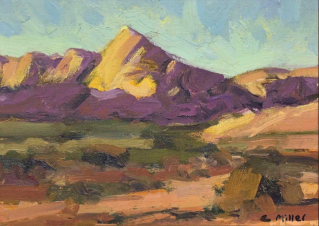 Chris Miller: Arizona Landscape