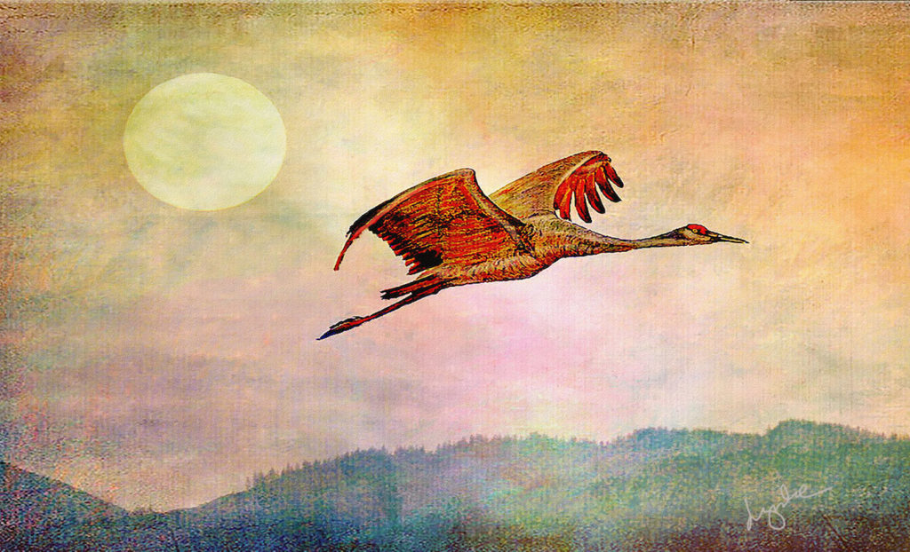 Lyndia Radice: Crane and Sun