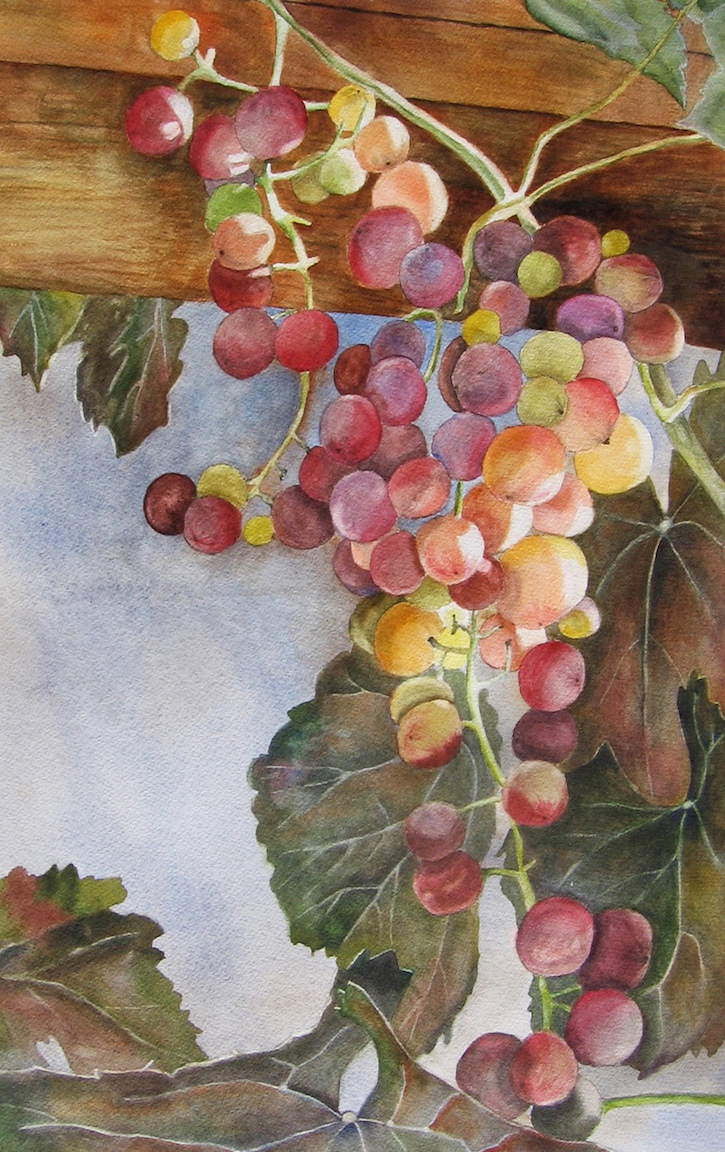 Janet Pfeiffer: Fruit of the Vine