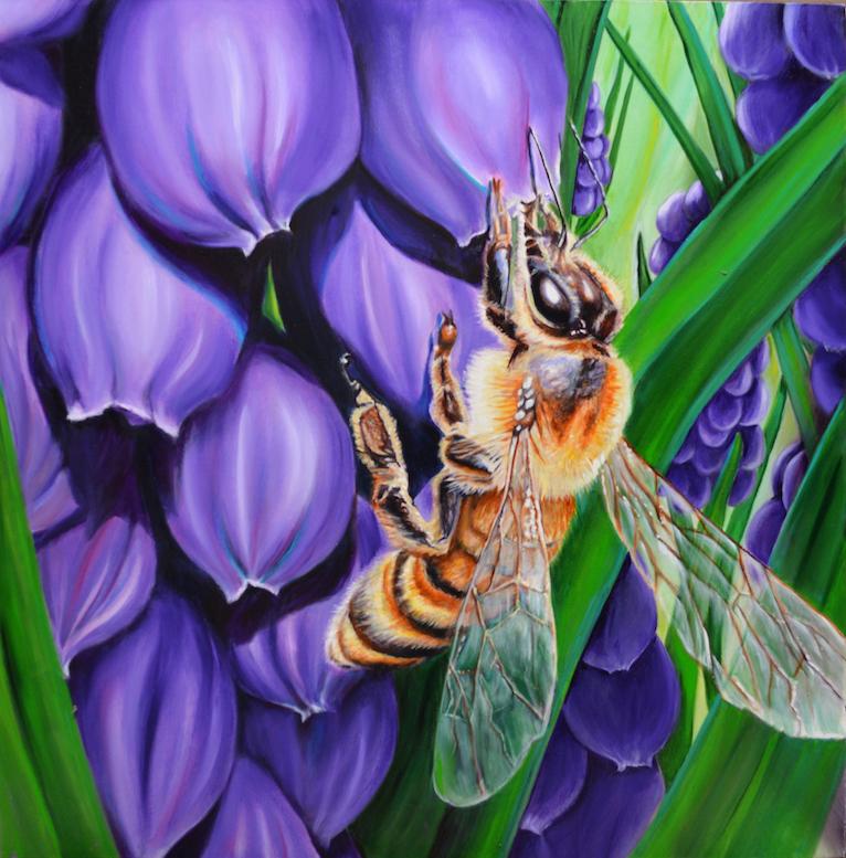 Sarah Hartshorne: Hyacinth
