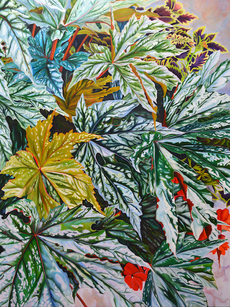 Sarah Hartshorne: Leaves 'N Things