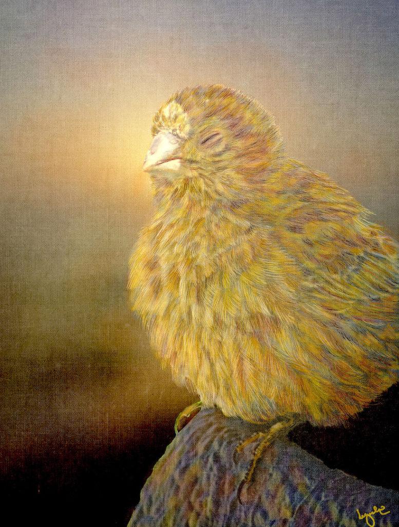 Lyndia Radice: Meditation