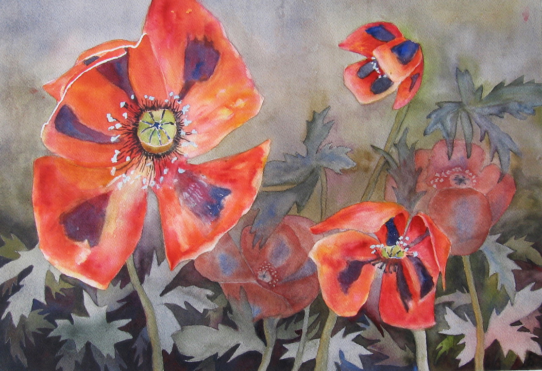 Janet Pfeiffer: Poppies
