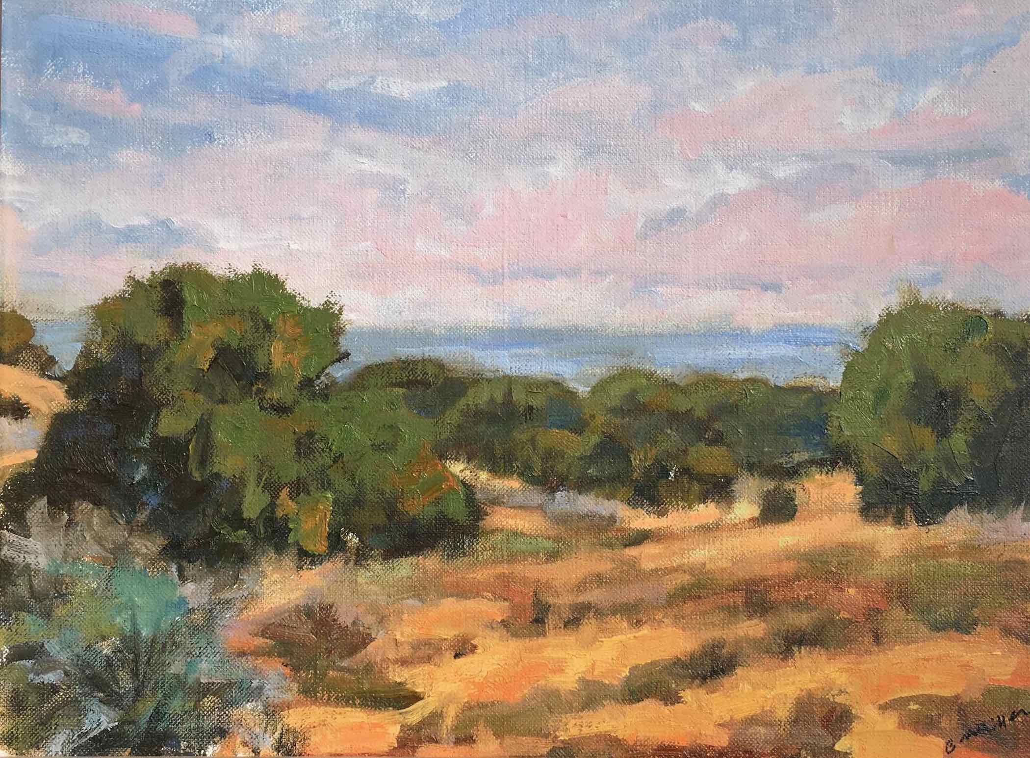 Chris Miller: Sandia Mountains Foothills