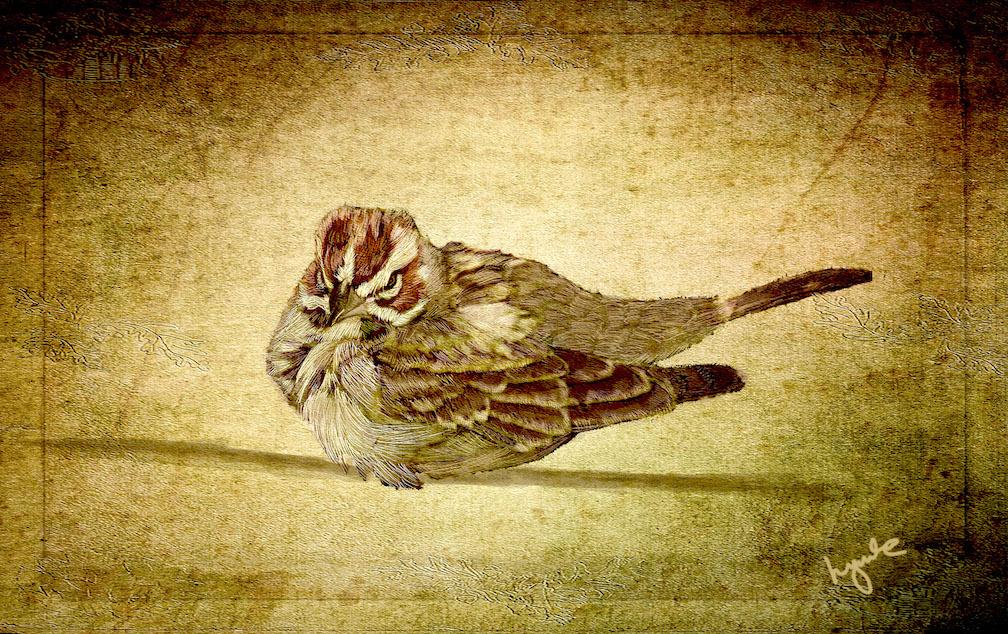 Lyndia Radice: Sepia Sparrow
