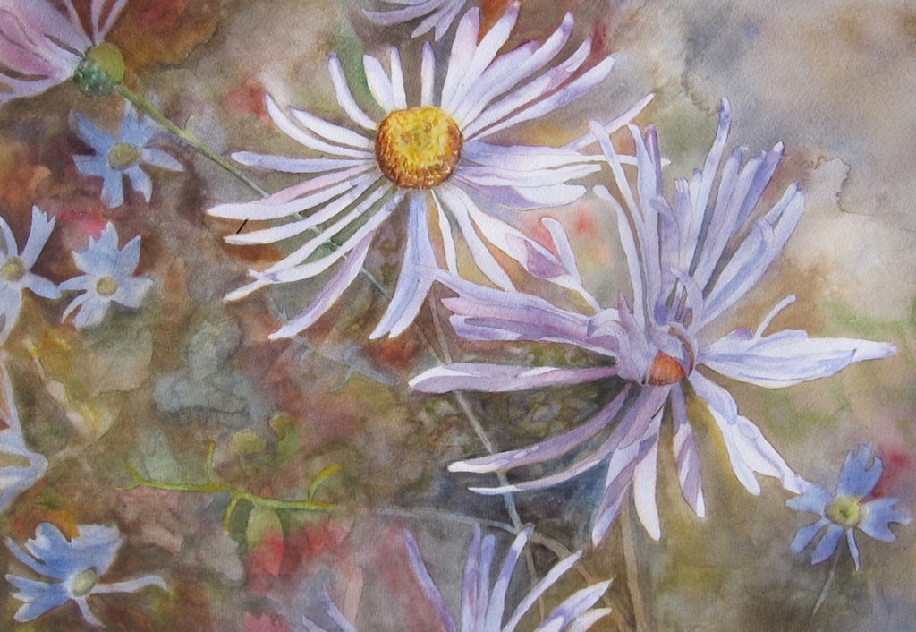 Janet Pfeiffer: Wild Asters
