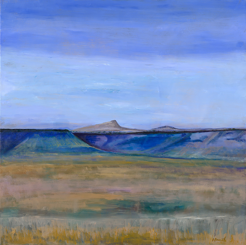 Barbara Barrett: Canyon Lands