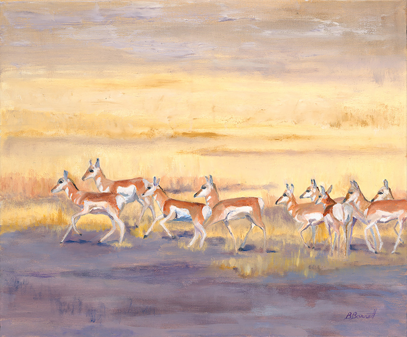 Barbara Barrett: Herd Instinct
