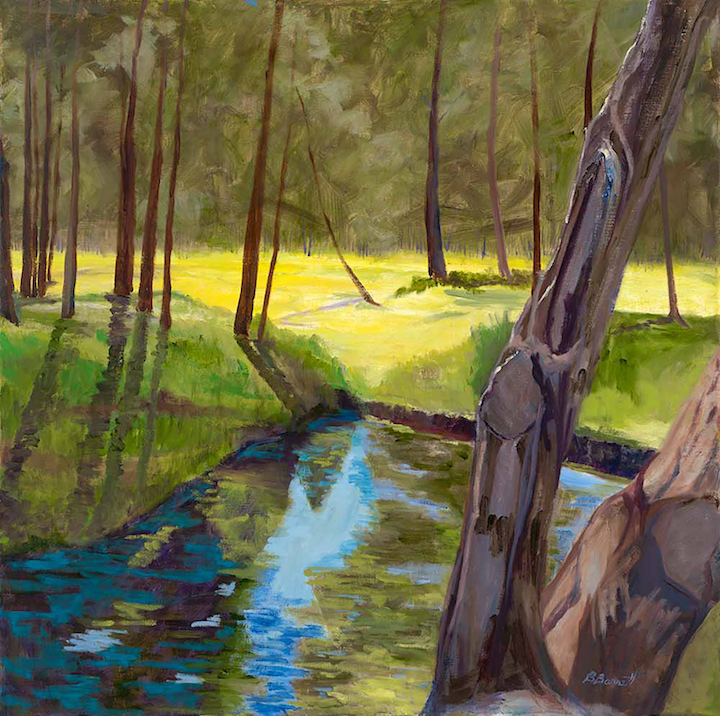 Barbara Barrett: Little Rio Grande Creek at Ft. Burgwin