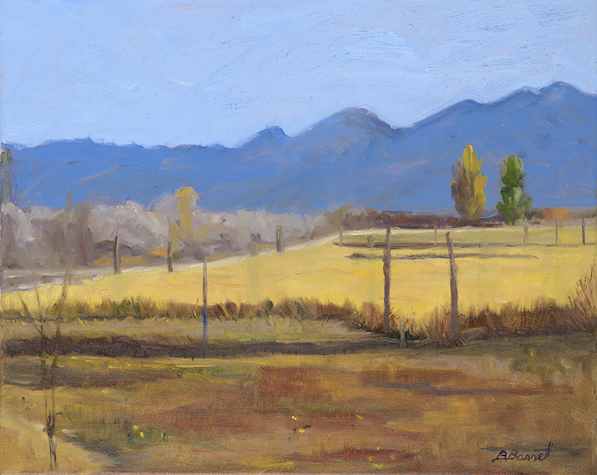 Barbara Barrett: View from Ranchos de Taos