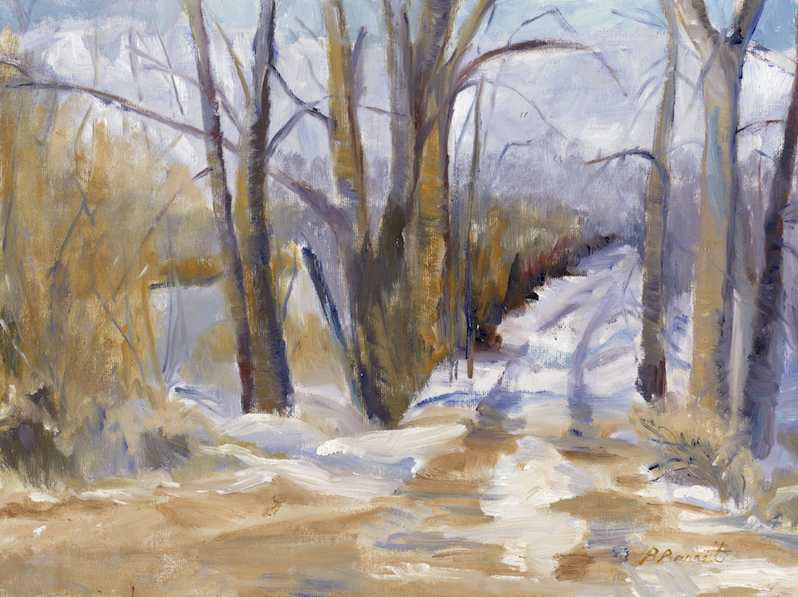 Barbara Barrett: Winter Road
