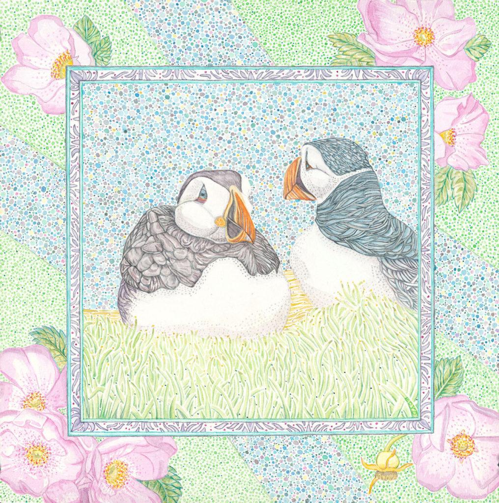 Judy Boyd: Atlantic Puffins