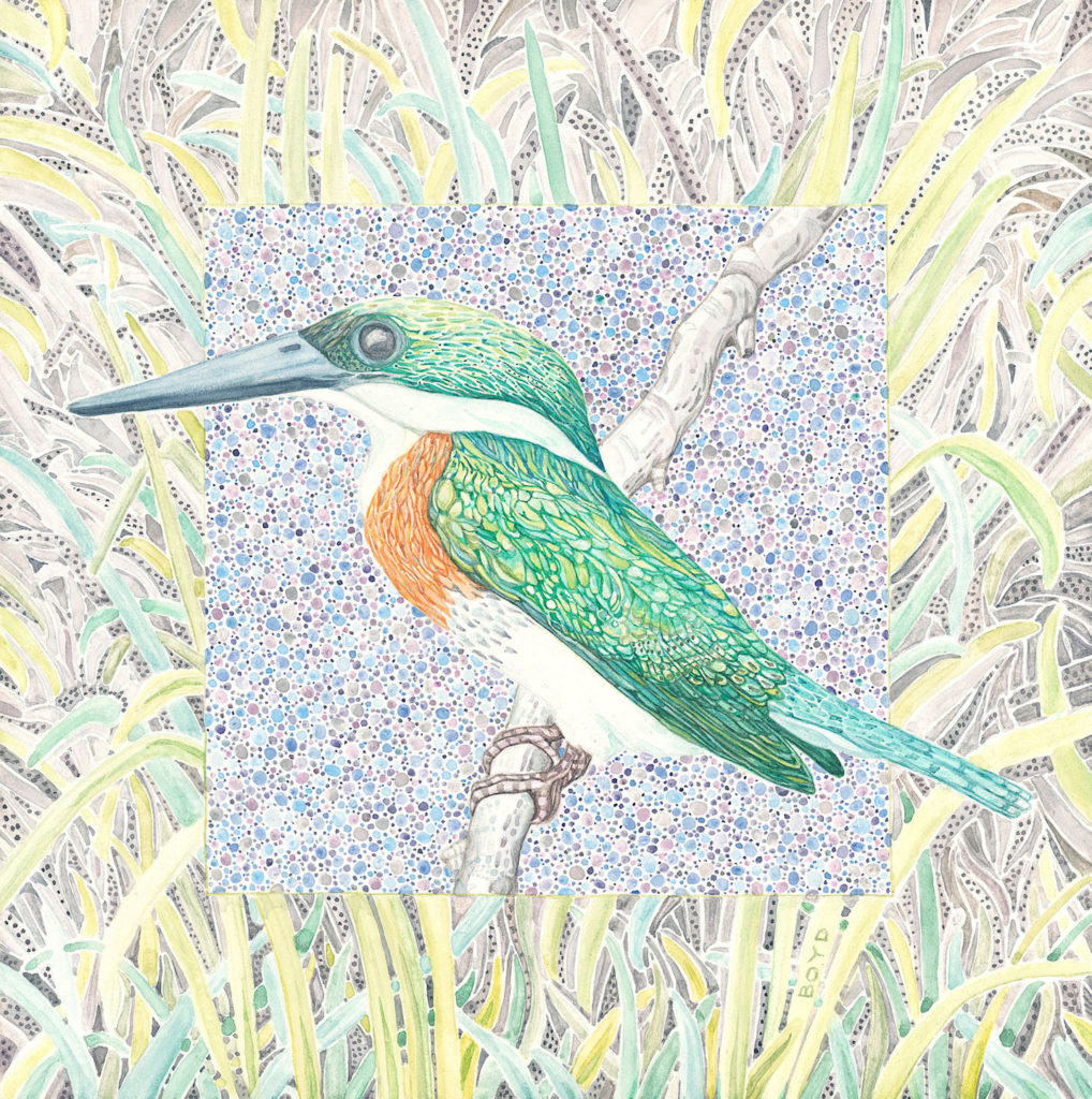 Judy Boyd: Green Kingfisher